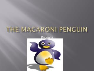 The macaroni Penguin