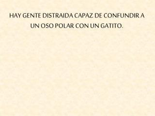 HAY GENTE DISTRAIDA CAPAZ DE CONFUNDIR A UN OSO POLAR CON UN GATITO.