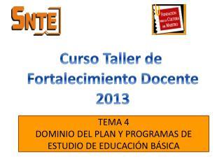 TEMA 4 DOMINIO DEL PLAN Y PROGRAMAS DE ESTUDIO DE EDUCACIÓN BÁSICA