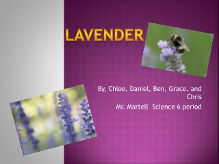 By, Chloe, Daniel, Ben, Grace, and Chris Mr. Martell  Science 6 period