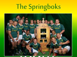 The Springboks