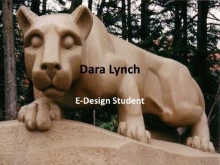 Dara  Lynch