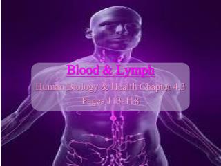 Blood & Lymph