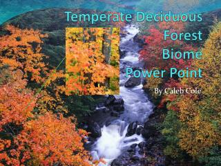 Temperate Deciduous Forest Biome Power Point