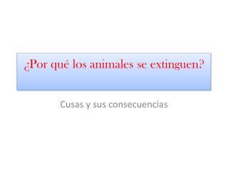 ¿Por qué los animales se extinguen?