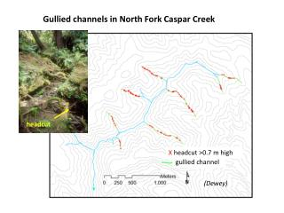 Gullied channels in North Fork Caspar Creek
