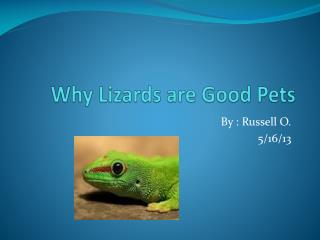 Why Lizards are  G ood Pets
