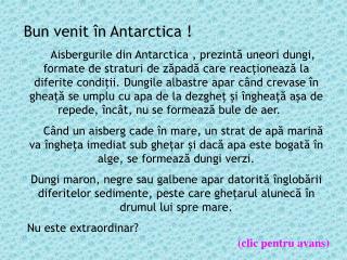 Bun venit în Antarctica !