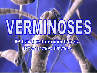 VERMINOSES
