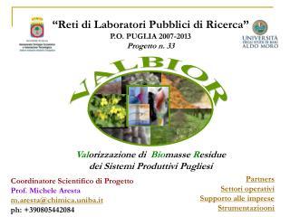 """""""Reti di Laboratori Pubblici di Ricerca"""" P.O. PUGLIA 2007-2013 Progetto n. 33"""