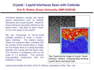 Crystal / Liquid Interfaces Seen with Colloids Eric R. Weeks, Emory University, DMR 0239109