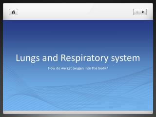 Lungs and Respiratory system