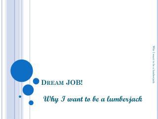 Dream JOB!