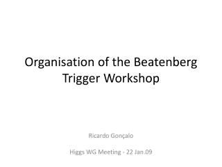 Organisation  of  the  Beatenberg  Trigger Workshop