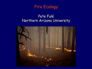Fire Ecology Pete Fulé Northern Arizona University