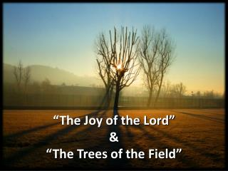 �The Joy of the Lord � & �The Trees of the Field �