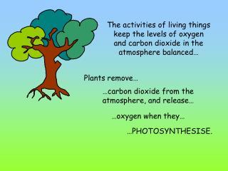 Plants remove…