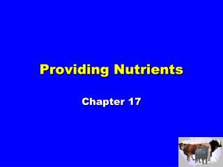 Providing Nutrients