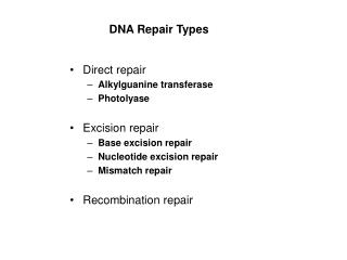 DNA Repair Types