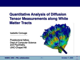 Quantitative Analysis of Diffusion Tensor Measurements along White Matter Tracts