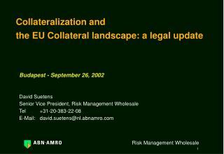 Budapest - September 26, 2002   David Suetens Senior Vice President, Risk Management Wholesale Tel 31-20-383-22-08 E-Mai