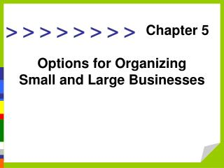 Options for Organizing Small and Large Businesses