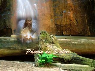 Páscoa do Senhor
