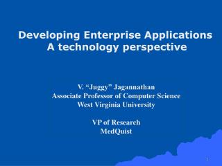Developing Enterprise Applications  A technology perspective