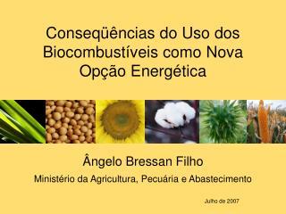 Ângelo Bressan Filho Ministério da Agricultura, Pecuária e Abastecimento Julho de 2007