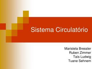 Sistema Circulat�rio