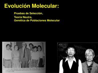 Evoluci ón Molecular: Pruebas  de Selección, Teor ía  Neutra, Genética  de  Poblaciones Molecular