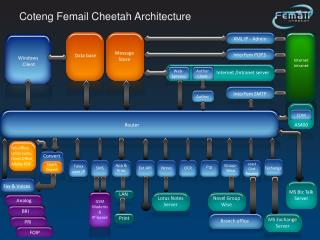 Coteng Femail Cheetah Architecture