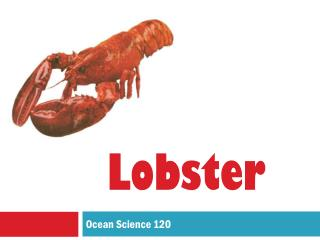 Ocean Science 120