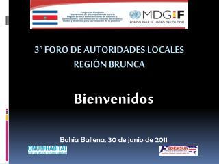 3°  Foro de Autoridades Locales  región  Brunca