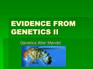 EVIDENCE FROM GENETICS II