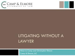 Litigating Without a Lawyer