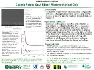 Casimir  Forces On A Silicon Micromechanical Chip
