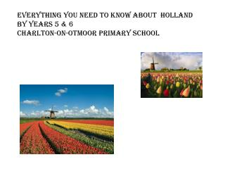 Everything you need to know about  Holland By Years 5 & 6 Charlton-on- Otmoor  Primary  SChool