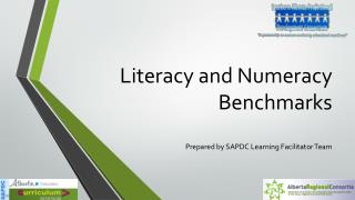 Literacy and Numeracy Benchmarks
