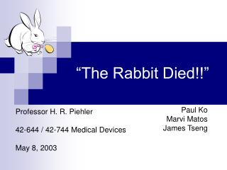 """The Rabbit Died!!"""