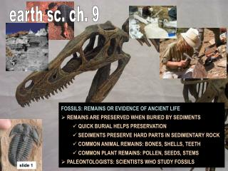 FOSSILS: REMAINS OR EVIDENCE OF ANCIENT LIFE  REMAINS ARE PRESERVED WHEN BURIED BY SEDIMENTS