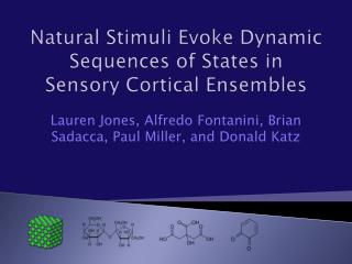 Natural Stimuli Evoke Dynamic Sequences of States in Sensory Cortical Ensembles