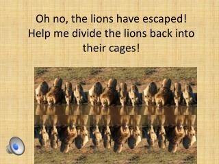 Oh no, the lions have escaped! Help me divide the lions back  into their cages!