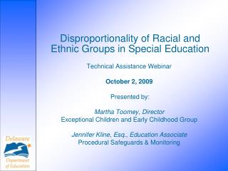 ethnic and racial group overview 2 essay Free coursework on getting rid of the stereotypes and teaching in a multicultural perspective overview essay their race and ethnic group and other.
