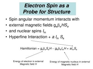 Electron Spin as a Probe for Structure