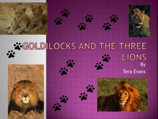 Goldilocks And The Three Lions