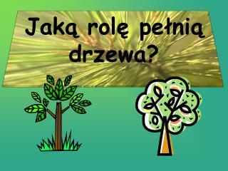 Jaką rolę pełnią drzewa?