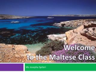 Welcome  to the Maltese Class