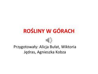RO?LINY W G�RACH