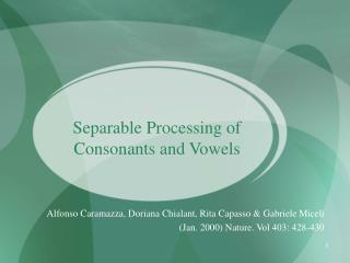 Separable Processing of Consonants and Vowels
